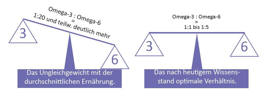 balance_omega_3_659bd0909439a8