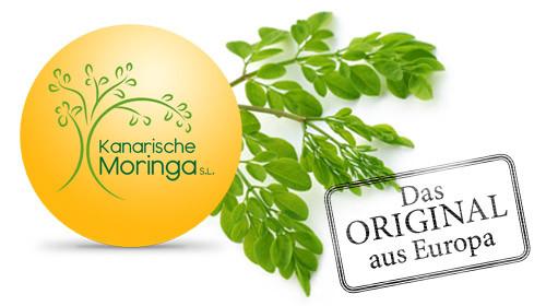 Logo_kanarische-Moringa